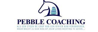 Pebble coaching